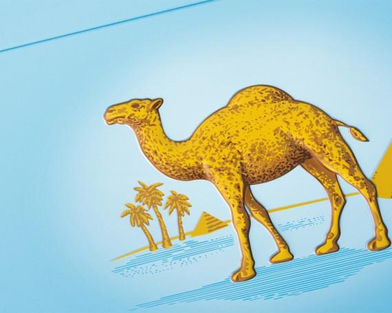 """Camel """"Rejuvenation"""""""