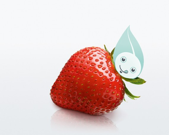 "JTI Corporate – EHS ""Frutta di stagione"""