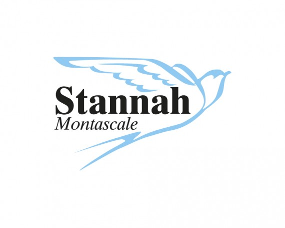 Stannah Montascale